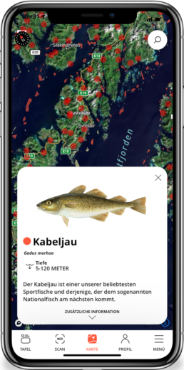 Kabeljau norwegen